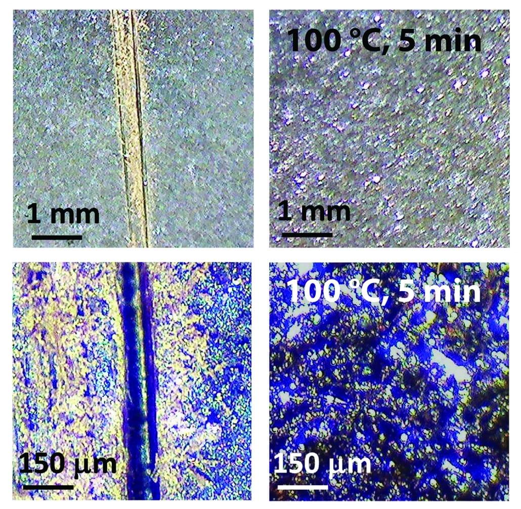 Self-Protecting Biomaterials image